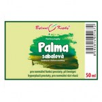 palma-sabalova-saw-palmetto